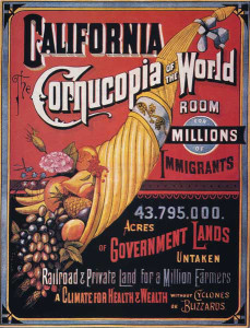 Ca-cornucopia_of_the_world